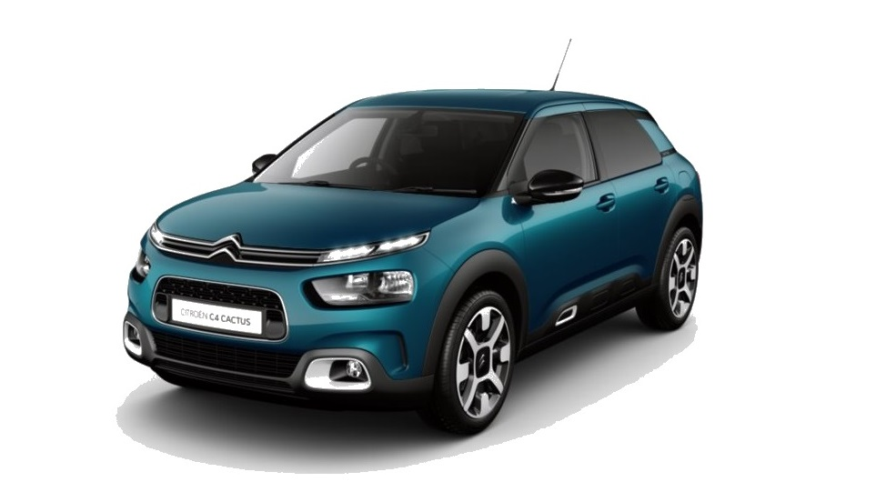 Photo of New C4 Cactus Hatch
